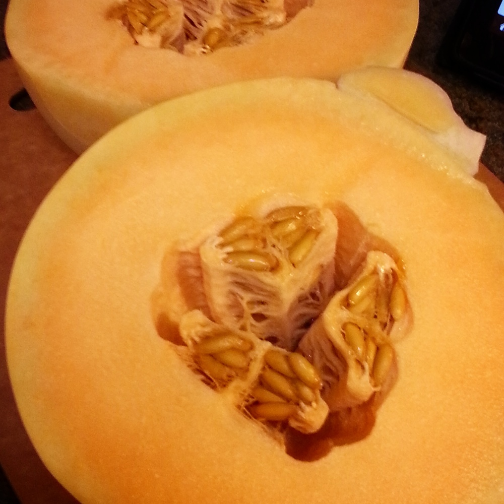Orange Flesh Honeydew Yogurt/Sorbet (1/6)
